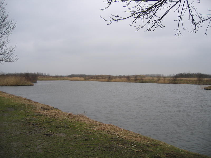 2006-02-20-13-30-52